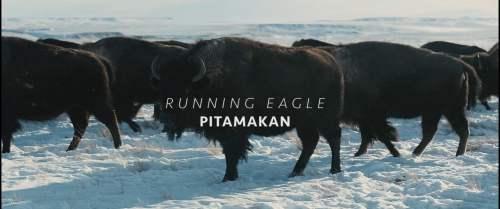 running-eagle